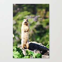 Angry Squirrel Has A Friend Canvas Print