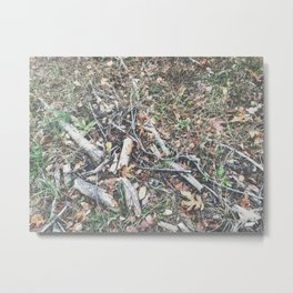 Autumn 14 Metal Print