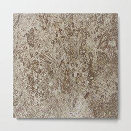 Natural Stone-Like Marble Brown Shades Metal Print