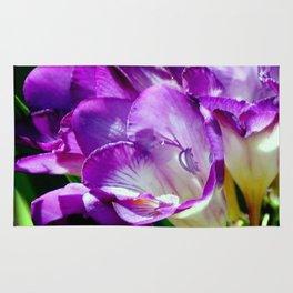 Royal Purple - The Prince Of Freesias Rug