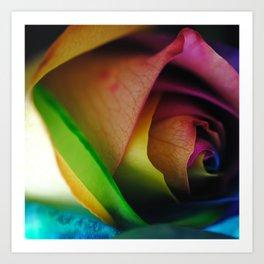 Rainbow Rose 18 Art Print