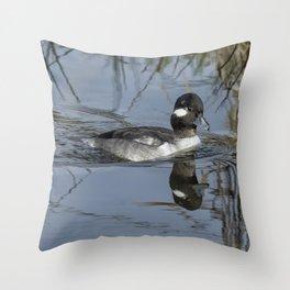 Female or Immature Male Bufflehead Throw Pillow
