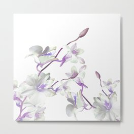 Branches with White Orchids Metal Print