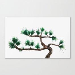 green pine tree painting Canvas Print