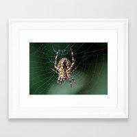 spider Framed Art Prints featuring Spider by Dora Birgis