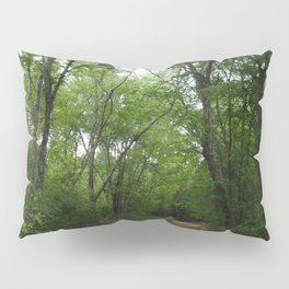 The Long and Winding Road Pillow Sham
