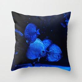 Aquarium fishes in blue light. Throw Pillow