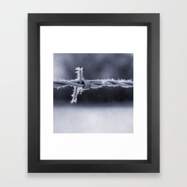 Frosted Barbed Wire Framed Art Print