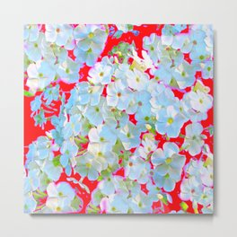 BLUE TINGED WHITE PHLOX FLOWERS RED Metal Print