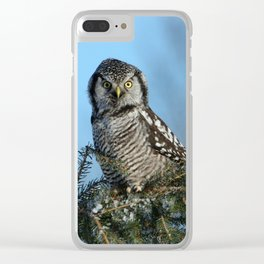 Atop a fallen branch Clear iPhone Case