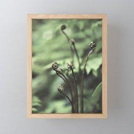 Fiddler Framed Mini Art Print