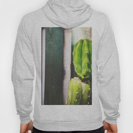 green cactus with green and white wood wall background Hoody