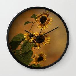 Origin Of Sunflowers  Wall Clock