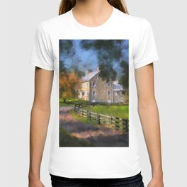 If These Walls Could Talk T-shirt