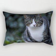 Green eyes cat Rectangular Pillow