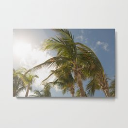 Island Palm Trees Metal Print