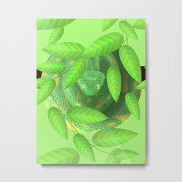 Bush viper Metal Print