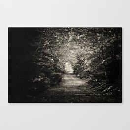 Creepy Road Canvas Print