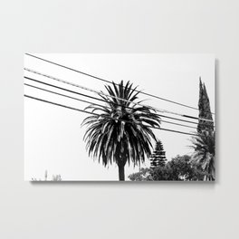 Through the Wires Metal Print