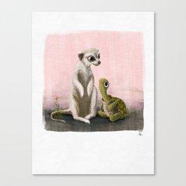 Meerkat and tortoise  Canvas Print