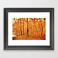 Tuesday led to the water's edge Framed Art Print