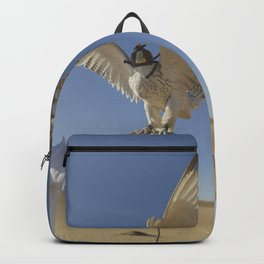Falconer With Hooded Falcon In The Desert Backpack