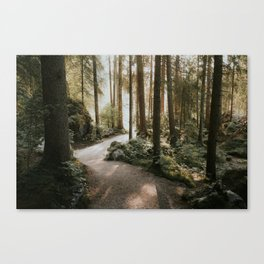 Lost in the Forest - Landscape Photography Canvas Print