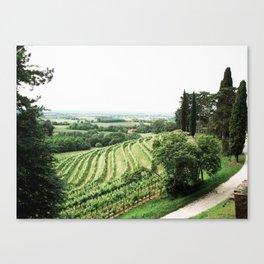 Cantina Aperte on the Italian/Slovenian border Canvas Print