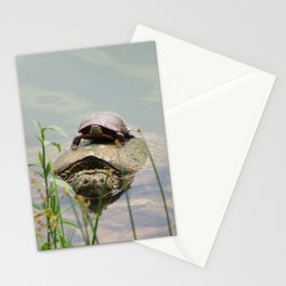 Turtleback Ride Stationery Cards