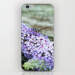 Butterfly I iPhone Skin