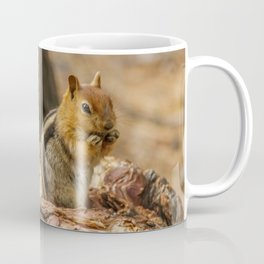 The Squirrel and the Redwood Coffee Mug