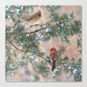 Winter Pair Cardinals (sq) by nancyacarter