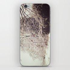 Ice Storm iPhone & iPod Skin
