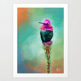 Pretty litte hummingbird Art Print