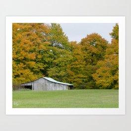 Across the Meadow Art Print