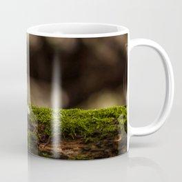 Wood mushroom Coffee Mug