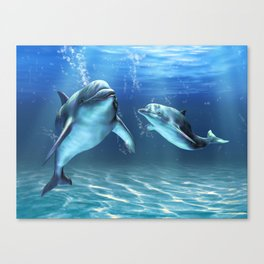 Dolphin Dream Leinwanddruck