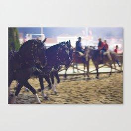 Feira da Golega 2015 3 horses 35 mm Canvas Print