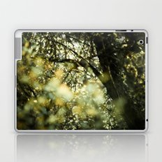 Bokah tree Laptop & iPad Skin