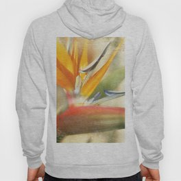 Bird of Paradise - Strelitzea reginae - Tropical Flowers of Hawaii Hoody