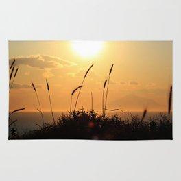 Evening Breeze Rug