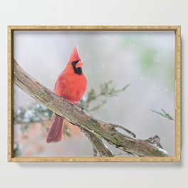 """Say What?"" (Northern Cardinal) Serving Tray"