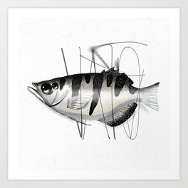 Tag on Fish Art Print