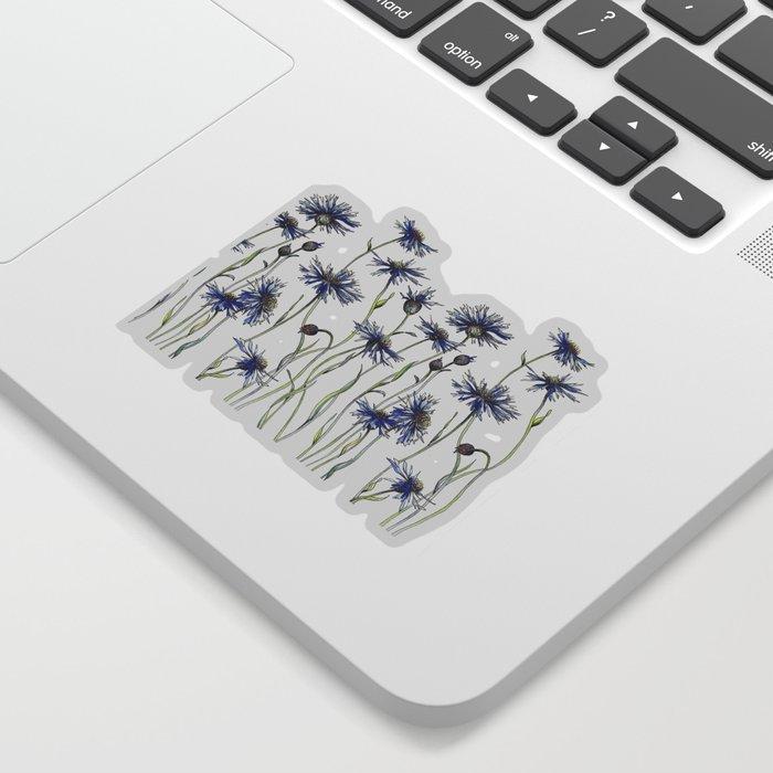 Blue Cornflowers, Illustration Sticker