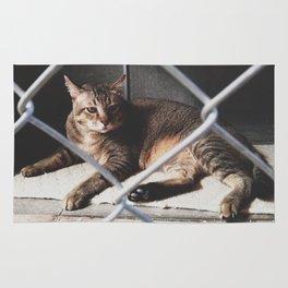 Captivity Rug