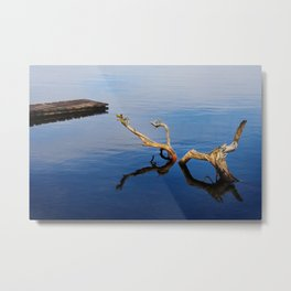 Lakes Edge Tranquility Metal Print
