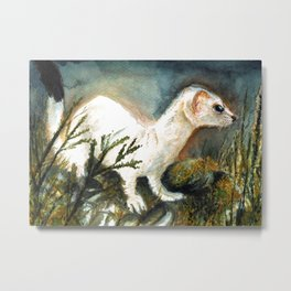 Winter stoat watercolor Metal Print