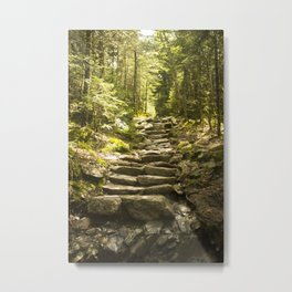 Along the Trail Metal Print