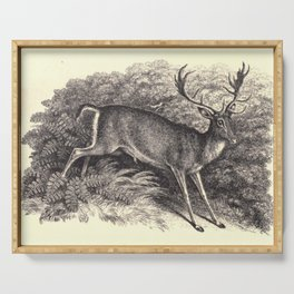 Antique Deer Serving Tray