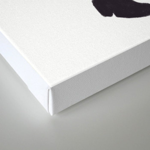overalls Canvas Print